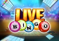 Live Bingo Online